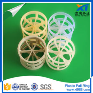 Polypropylene Pall Ring for Tower Packing pictures & photos