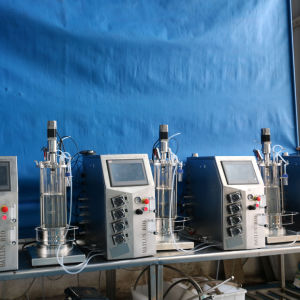 10 Liters Four Conjoinedv of Glass Fermenters (in autocalve) pictures & photos
