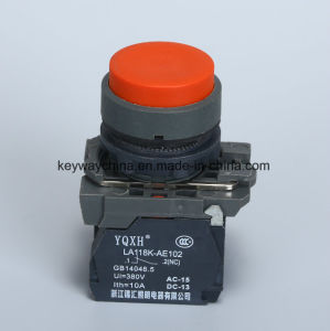 22mm Push Button Switch with Red and Green Colors pictures & photos