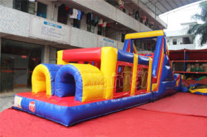 Double Lane Inflatable Obstacle Course (CHOB210) pictures & photos