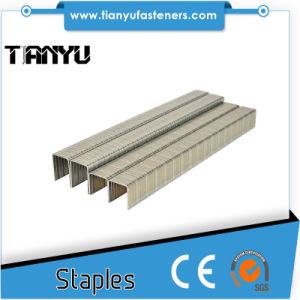 Heavy Duty Stainless Steel Narrow Crown Staples pictures & photos