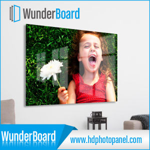 Good Quality Aluminum Picture Print with Sublimation Technology pictures & photos