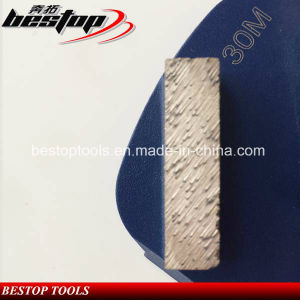 Lavina Floor Systems Grinding Tools with 2 Bar Segments pictures & photos