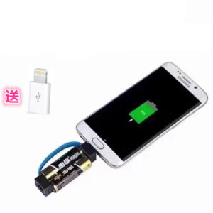 Smallest Mobile Phone Charger Emergency AA Battery Chargers pictures & photos