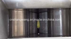 High Quality Papaya Processing Line pictures & photos