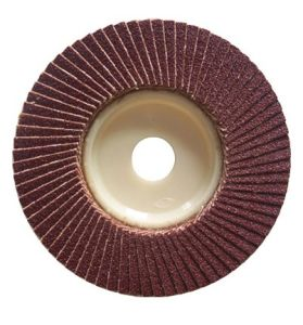 Abrasive Flap Disc with Hub pictures & photos