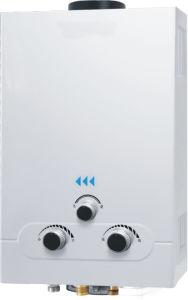 Flue Type Gas Water Heater (JSD-B01)