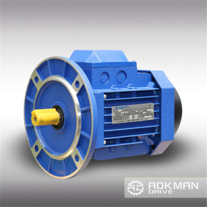 Hot Selling 380V-400V AC Motor with Brake pictures & photos