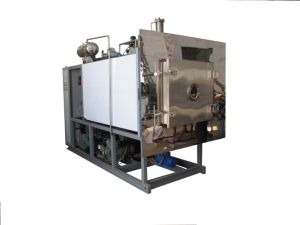 Glzy-2 Freeze Drying Machine/Lyophilizer pictures & photos