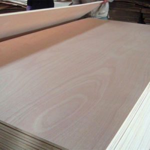 Okume Commercial Plywood Veneered Plywood for Furniture/Decoration (GOLD LUCK) pictures & photos