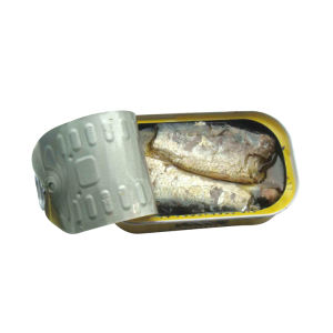 Canned Sardine with High Quality pictures & photos