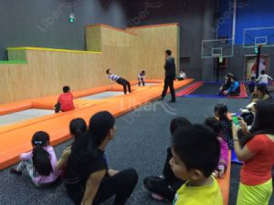 High Quality Manufacturer for Sale Indoor Trampoline World pictures & photos