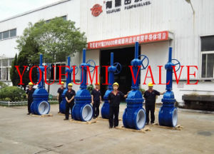 PFA Lined Gate Valve Rising Stem Type pictures & photos