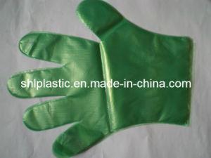 LDPE Gloves (SHL02)