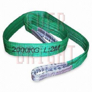 Bs0029 Flat and Round Polyester Wll2000kgs Webbing Sling