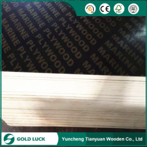 1250 X 2500/1220 X 2440 Poplar Core Brown Film Faced Construction Plywood with Logo pictures & photos