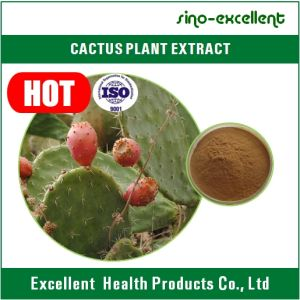 Weight Control Powder Cactus Extract