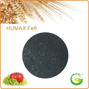 Humic Acid Chelate Iron Fertilizer (HA+Fe) pictures & photos