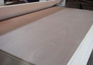 Red Hardwood Commercial Plywood for Furniture Usage pictures & photos