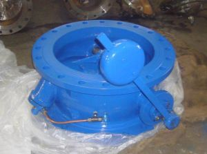 Tilting Disc Check Valve (with weight hammer) (DH44X) pictures & photos