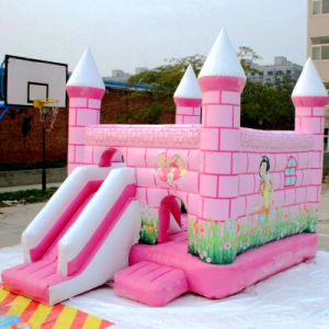 New Inflatable Castle for Amusement Park