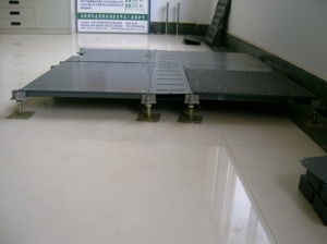 Raised Floor (SV300068)