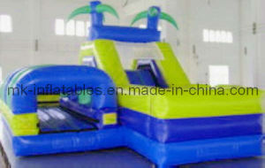 Inflatable Water Slide (WS0011)