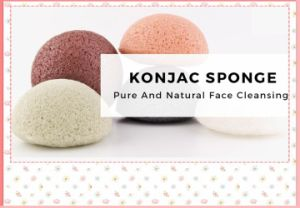 2017 Professional Facial 100% Natural Konjac Sponge pictures & photos