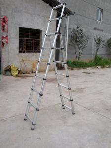 Telescopic Ladder pictures & photos