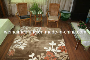 Raschel Mink Polyester Carpet/ Mat/Rug (MQ-CP005) pictures & photos
