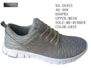 Gray Color Mesh Men Casual Shoes pictures & photos
