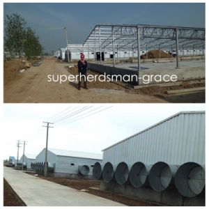 Prefabricated Poultry Farm House for modern Integrated Farm pictures & photos