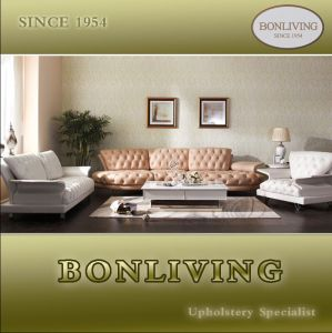 Italian Design Living Room Luxury Nubuck Leather Sofa (B21&B22) pictures & photos