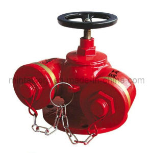 Water Pump Coupling and Outdoor Fire Hydrant