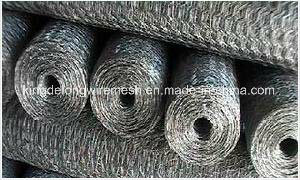 Hot Dipped/Electro Galvanized Hexagonal Wire Netting pictures & photos