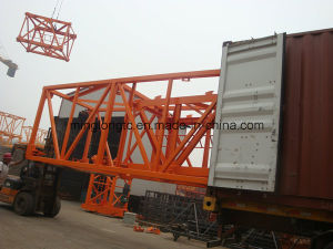 Qtz40 (TC4010) Inner Climbing Tower Crane to Brazil pictures & photos