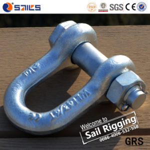 Hot DIP Galvanized G2150 D Ring Shackle pictures & photos