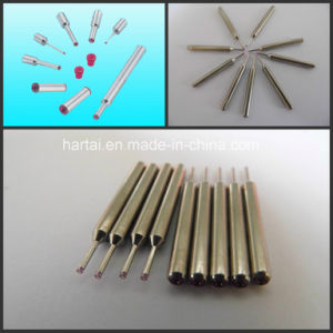 Ruby Wire Guides for Winding Machinery pictures & photos