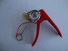Fire Safety Fire Extinguisher Valve 4-6kg pictures & photos