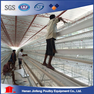 a Type Automatic Battery Feeding Frame Poultry Equipment for Chicken Raise pictures & photos