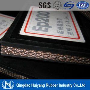 Conveyor Belt Price of Fabric Conveyor Belting
