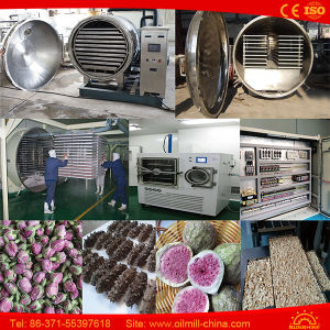 Fd-100n Food Vacuum Freeze Dryer Price Fruit Drying Machine pictures & photos