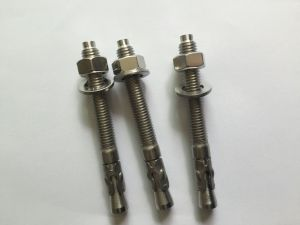 Stainless Steel 304/316 Wedge Anchor pictures & photos