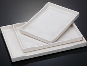 Custom Plastic Trays for Restaurant & Hotel Supplies pictures & photos