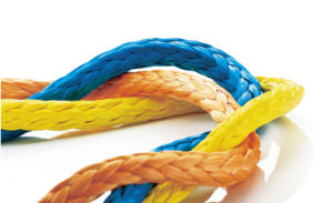 Ropers Hmpe Rope with Resistance Coated pictures & photos