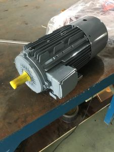 AC Motor with Air Brake in Japan pictures & photos