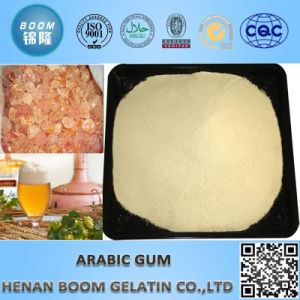 Gum Arabic Powder for Foam Stablizer in Beer pictures & photos