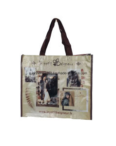 Recycled Custom Printing Grocery Tote Shopping PP Non Woven Bag pictures & photos