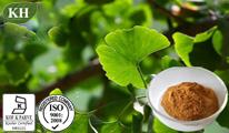 Kingherbs′ 100% Natural Ginkgo Biloba Extract (CAS No.: 90045-36-6) pictures & photos