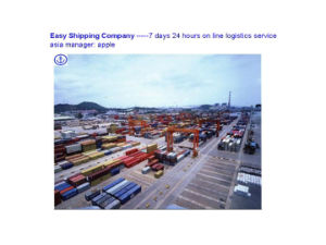 Professional Consolidate Sea Freight From China to Dubai Sea Shipping pictures & photos